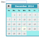 jQuery UI datepicker / calendar with 9 examples