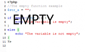 PHP empty function with 3 examples
