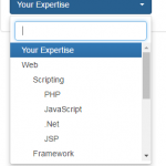 The select dropdown with hierarchy by jQuery