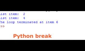 The break statement in Python
