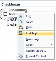 Excel edit checkbox caption