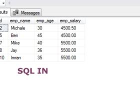 The SQL IN operator