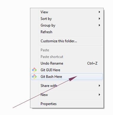 Git bash option