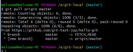 Git pull files