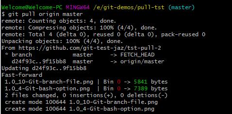 Git pull update local